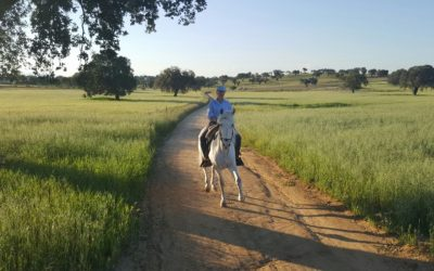 Riding on the back of memorable experiences with Teresa